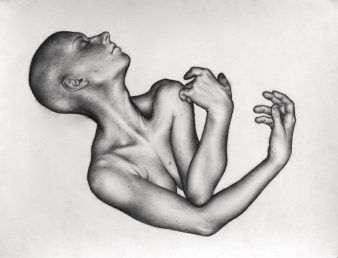 Gestation, 2009, charcoal drawing by Jennifer Ramey