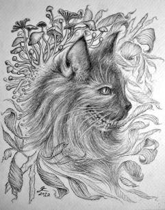 Cheshire, graphite on paper, 2012, by Jennifer Ramey
