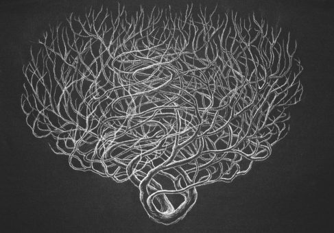 Hectical Brush, white charcoal on paper, 2011, by Jennifer Ramey