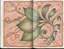 Spiral Leaf: Micron, watercolor, and Graphitint pencils, black sketchbook, 2016 by Jennifer Ramey