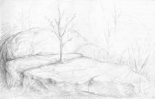 Rocks in the woods, red sketchbook, 2015