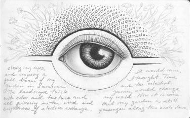 Eye of the Year, red sketchbook, 2015