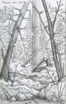 Woods sketch, black sketchbook, 2016