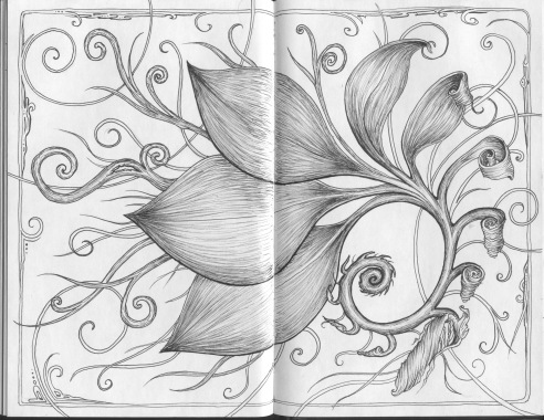 Spiral of leaves, black sketchbook, 2016